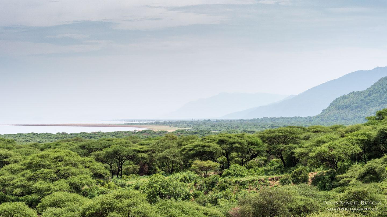 Lake Manyara - Tansania - Afrika