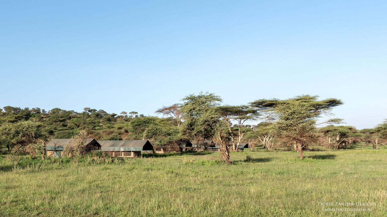 Zeltcamp - Serengeti - Tansania - Afrika