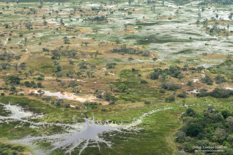 Okavango Delta - Botswana - Afrika